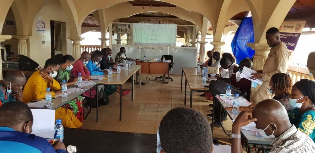 Workshop participants in Guinea discuss community health and civil society